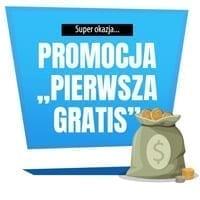 Promocja pierwsza pożyczka gratis - infografika